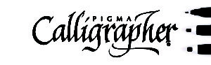 PIGMA Calligrapher® Set of 3 black