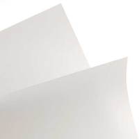 Canson® Opalux Sheets